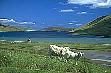 Shetland Islands/Great Britain: In Central Mainland