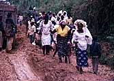 Congo (Zaire): Road Komanda-Beni in Eastern Congo: If the cars get stuck, the wedding parties have to walk