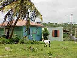 Anguilla: Rural idyll in Sandy Ground
