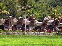 Ke'te Kesu near Rantepao/Sulawesi/Indonesia: Traditional Toraja village