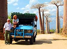 Madagascar/Morondava: 27 years 'on the road', here in the 'All�e des Baobabs'