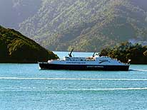New Zealand: South to North Island - Ferry Picton-Wellington, here in Queen Charlotte Sound, Marlborough/South Island