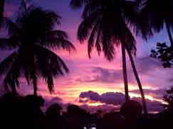 Port of Spain/Trinidad & Tobago: Sunset mood
