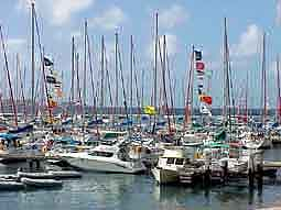 BVI: Masts of the 'Sunsail' marina